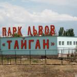 Белогорск. Парк Львов Тайган